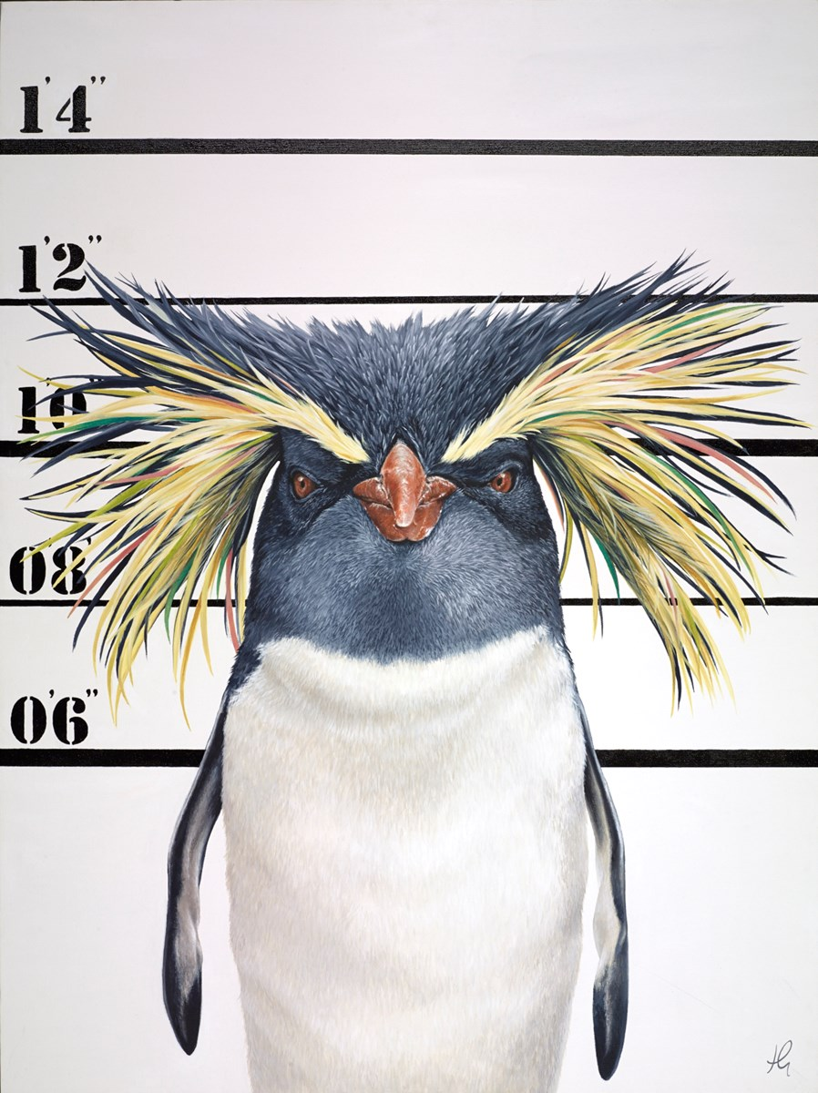 The Unusual Suspects - Rocky by hayley goodhead -  sized 30x40 inches. Available from Whitewall Galleries